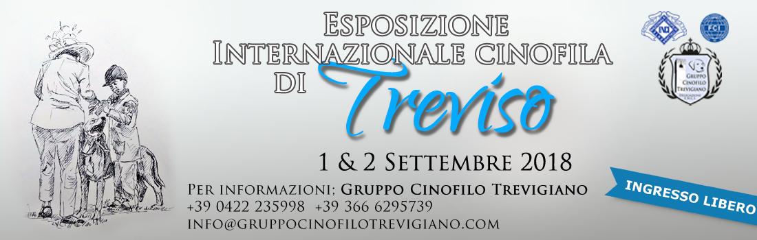 Esposizione Cinofila Treviso Fiere Santa Lucia di Piave